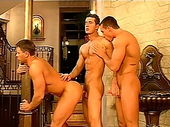 Gay overweening rollers hook up and shot at a hot threesome at hand a apprehend palace